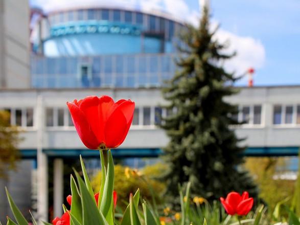 Энергосистема Украины до сих пор работает без пяти атомных блоков