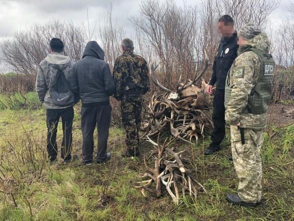 В Чернобыльской зоне обнаружили нарушителей радиационного режима: собирали оленьи рога