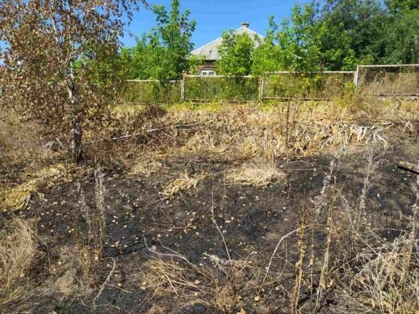 В Харьковской области в результате поджога сухой травы погибла пожилая женщина