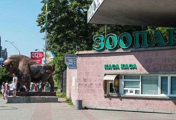 В Киевском зоопарке родилась альпака