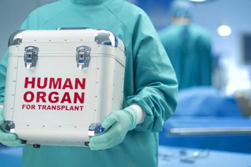 Кабмин рассмотрит вопрос создания центра трансплант-координации - Минздрав