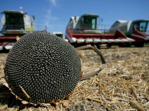 В Украине собрали уже почти 36 млн тонн зерна