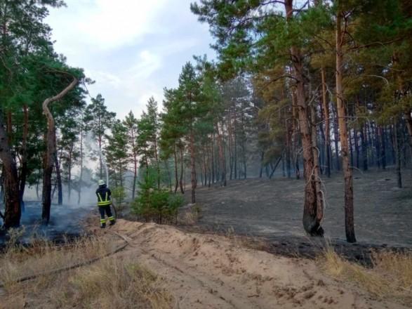 В Луганской области горит лес