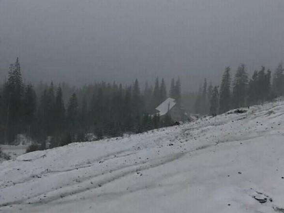"""Мороз и снег: на высокогорье Карпат разыгралась """"зима"""""""
