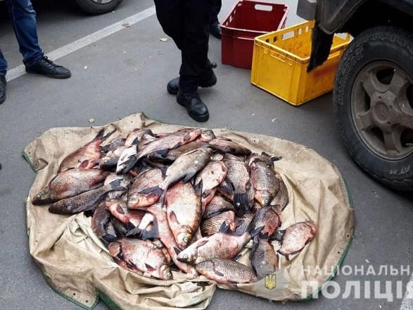 В Черниговской области в браконьерстве разоблачили сотрудников рыбоохраны