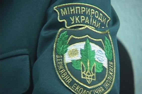 С начала года в Украине браконьеры нанесли более 25 млн гривен убытков государству