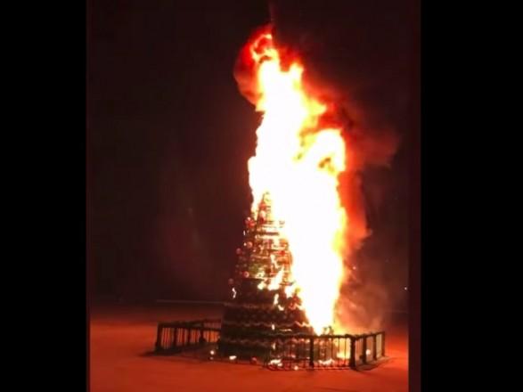 В центре Чаплинки полностью сгорела новогодняя елка