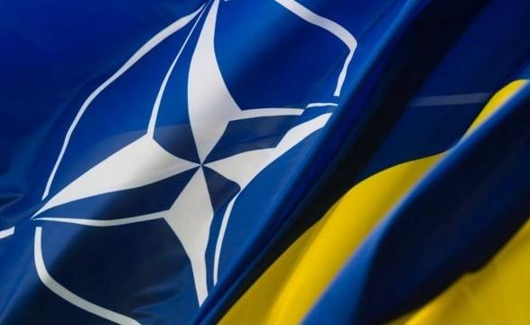Представительство НАТО в Украине назвало основные достижения сотрудничества за год