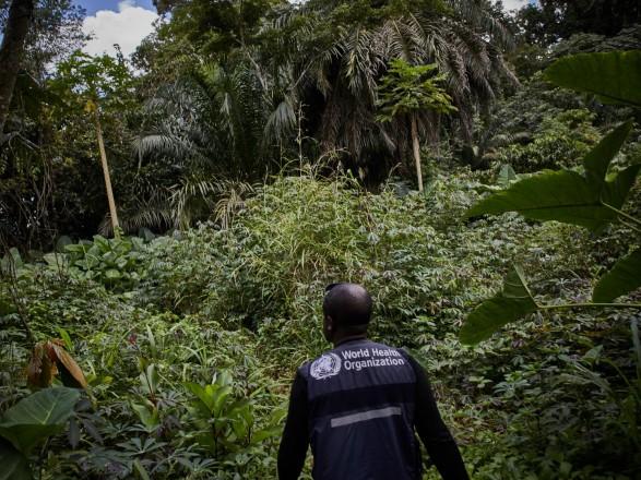 В Африке снова зафиксировали смерть от Эболы