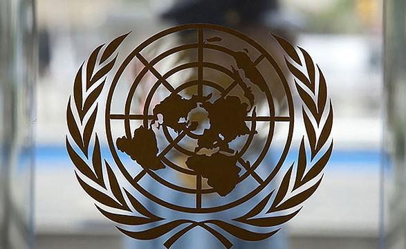 Новая администрация США впервые высказалась в ООН насчет ситуации на Донбассе