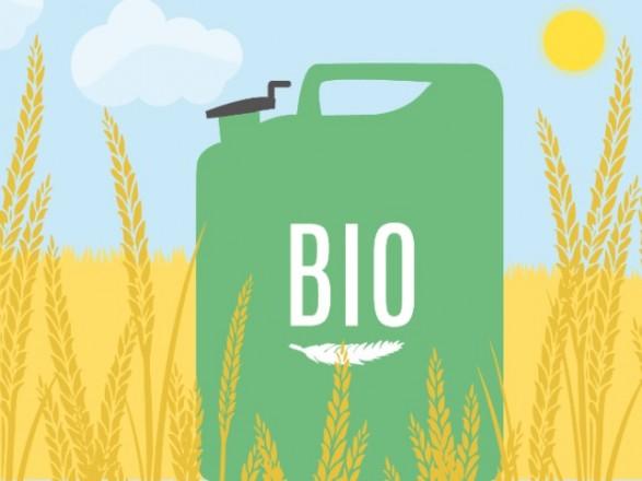 Энергетический прорыв для Украины: эксперты о перспективах производства экогаза и биотоплива