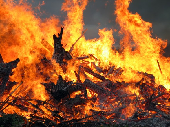 """В Киеве в парке """"Муромец"""" масштабный пожар"""