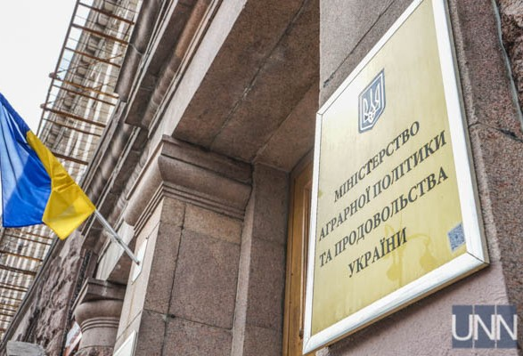 Экономический эксперт: если министры не начнут работать, то в восстановлении Минагрополитики нет смысла