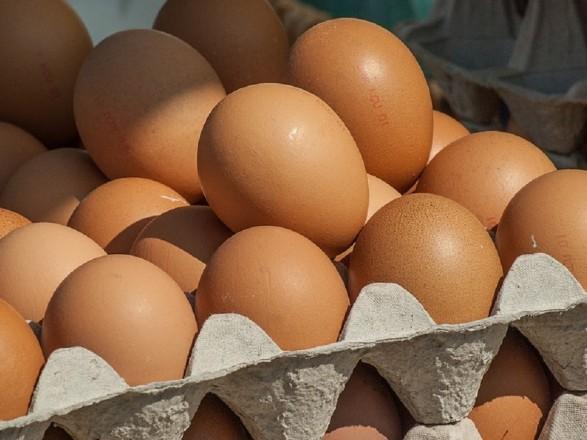 Украинские производители получили возможность экспортировать яйца в Эфиопию