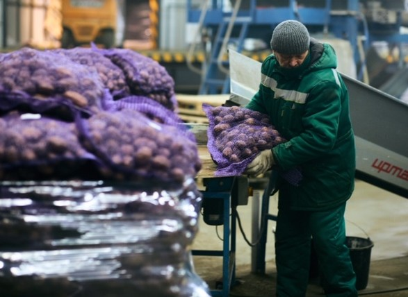 Веги Тренд. В овощехранилище под Киевом открылся уникальный таможенный терминал
