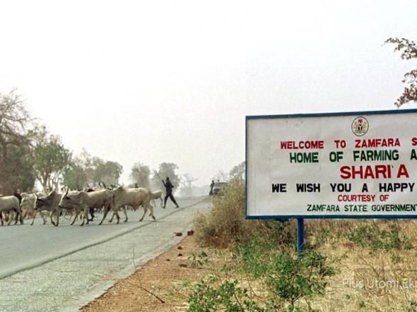 В Нигерии вооруженные люди похитили из школы более 300 учениц - СМИ