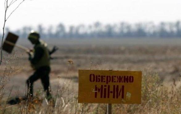 Гуманитарное разминирование состоится, если Российская Федерация примет соответствующее решение - ТКГ