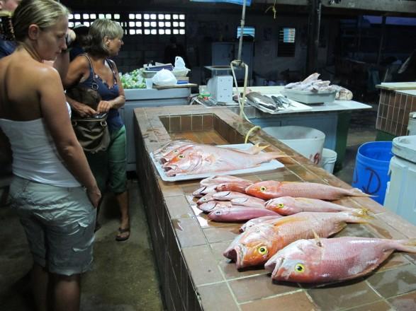 Больше всего рыбы и морепродуктов Украина импортирует из Норвегии