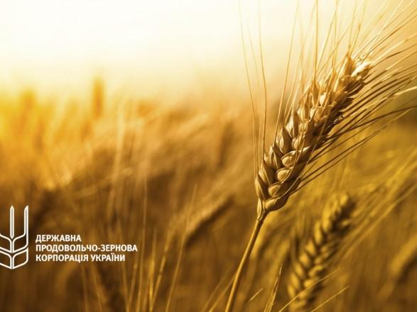 """Эксперт объяснил, почему """"Государственная продовольственно-зерновая корпорация Украины"""" превратилась в кормилицу коррупционеров"""