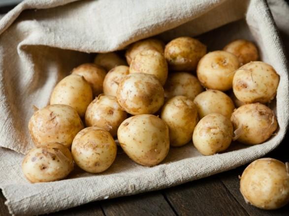 Картофель с начала года подорожал на 20%