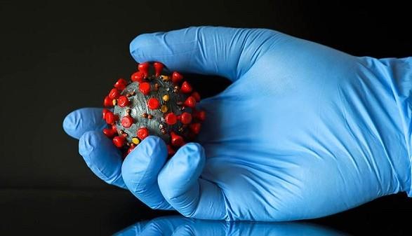 Британские ученые будут заражать коронавирусом добровольцев для исследования иммунитета