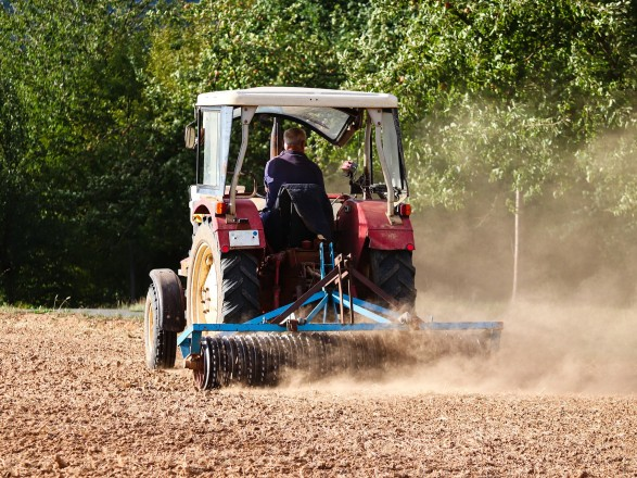 Рынок земли ведет к латифундизации: эксперт о том, как простой фермер останется ни с чем