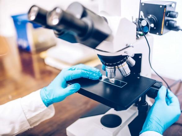 Фармаколог рассказала, какой уникальный биофлавоноид спасает от цитокинового шторма при COVID-19