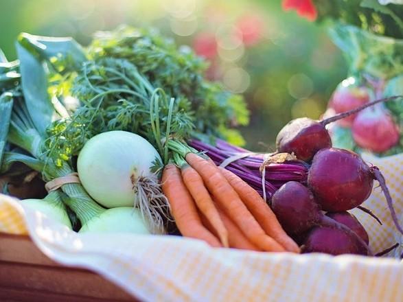 Эксперт прогнозирует подорожание овощей в Украине до конца июня на 20-30%