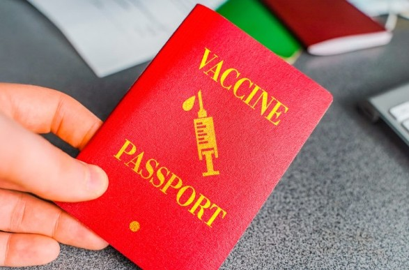 В ЕС назвали сроки появления паспортов вакцинации