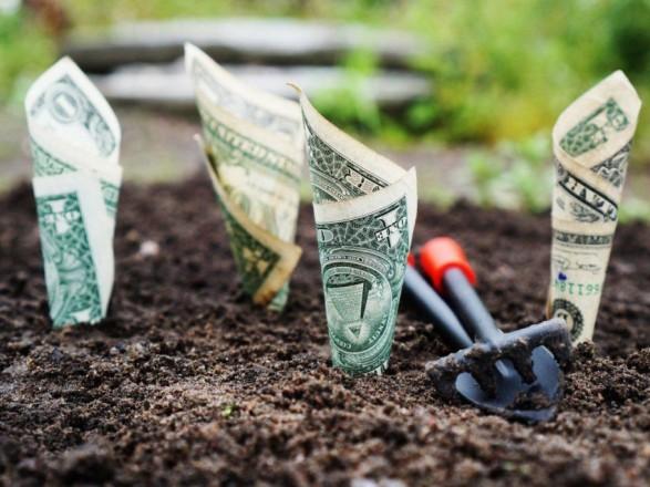 Последний из пакета земельной реформы: нардепы приняли законопроект об э-аукционах