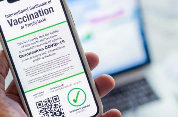 В ЕС назвали дату введения паспортов вакцинации