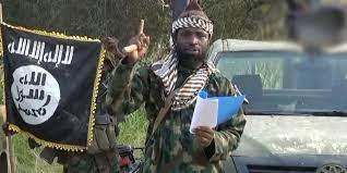 Глава нигерийских террористов совершил самоубийство