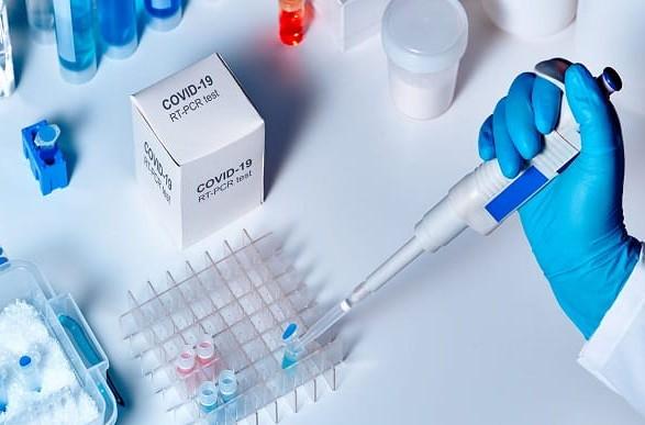 На Буковине обнаружили 24 новых случая коронавируса в сутки