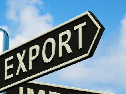 Эксперт прогнозирует -70 млн потерь украинским экспортерам из-за решения Беларуси: КМУ готовит новые рынки сбыта