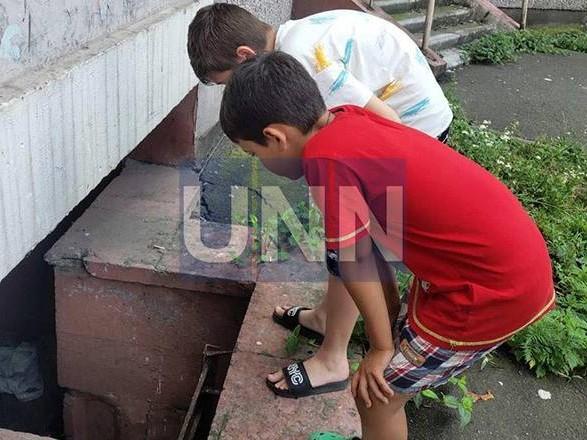 Выбросили как мусор: в столице кота сбросили из окна многоэтажки