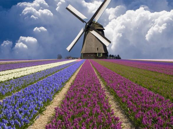 Украинцы отныне могут путешествовать в Нидерланды без ограничений