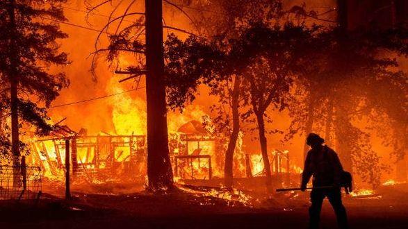В США лесные пожары бушуют в 12 штатах: страна находятся в состоянии повышенной готовности