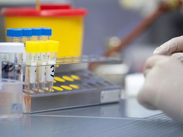 """Инфекционист: заблаговременное тестирование на COVID-19 помогло бы избежать вспышки в лагере """"Молодая гвардия"""""""