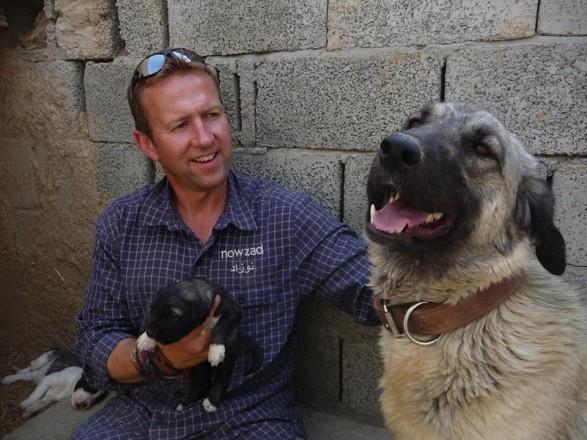Минобороны Великобритании позволило эвакуацию животных из Кабула