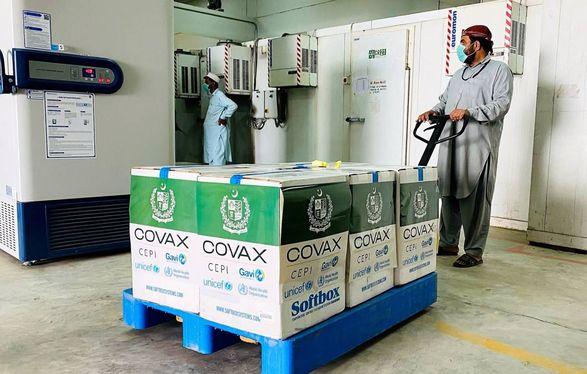 COVAX сократит поставки вакцин: названо причины