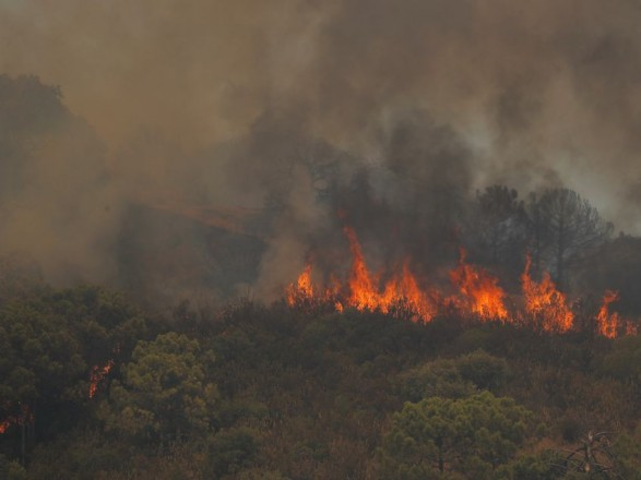 Пожары на юге Испании продолжаются: сгорело более 7 тыс. гектаров