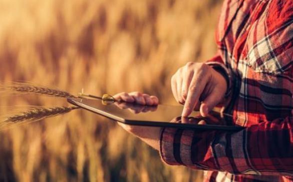 Аграрии проанализировали, что заставляет нардепов принимать разрушительные налоговые законы