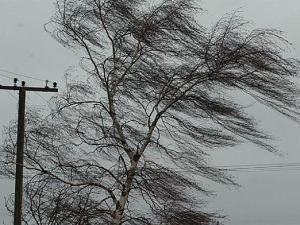 Картинки по запросу сильний вітер