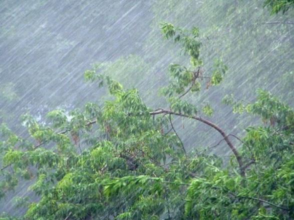Шторм на Закарпатті: будуть сильні вітер та дощ, подекуди град